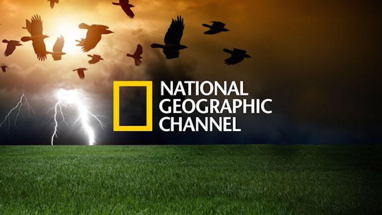 Le Replay De National Geographic Arrive Sur Freebox