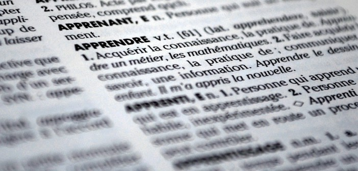 Dictionnaire mots définitions explications