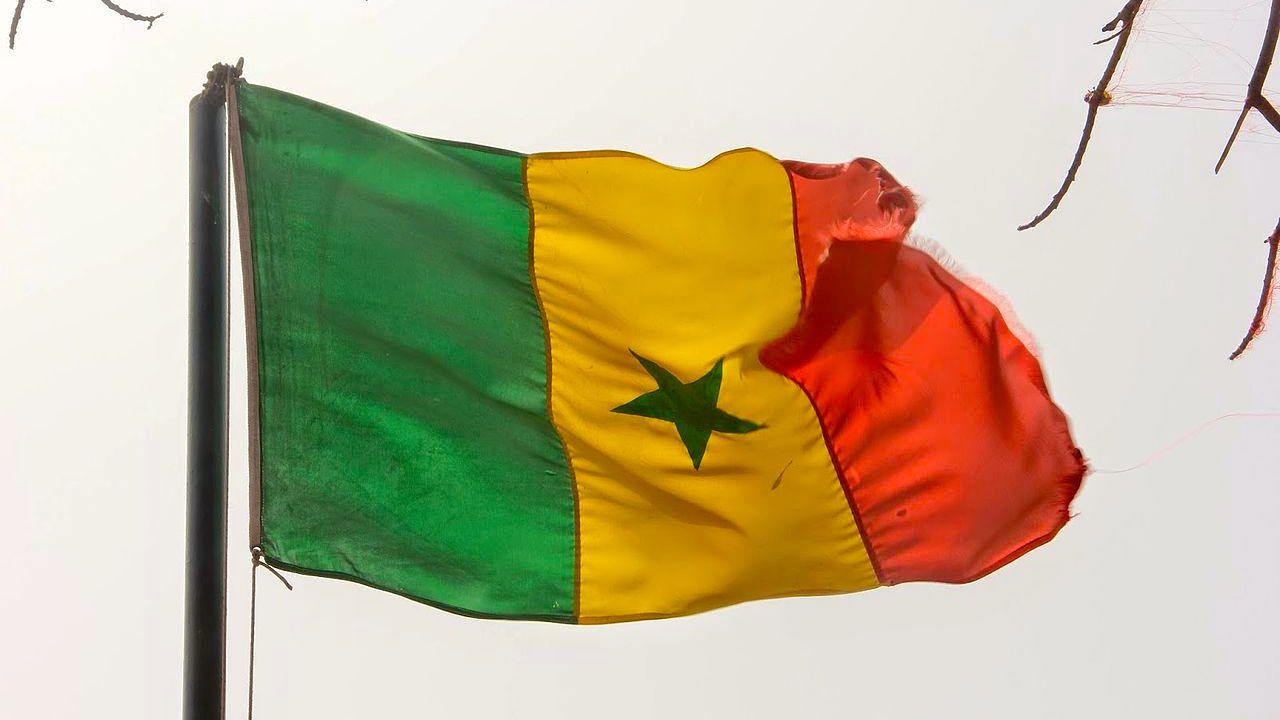 À qui appartient finalement Tigo, filiale de Millicom — Sénégal