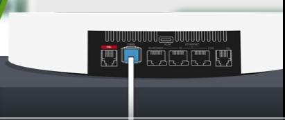 Insertion du connecteur bleu